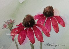 This is an original watercolor painting of some pink coneflowers by RoseAnn Hayes, available in Etsy shop.