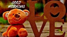 Find best cute whatsapp status love in English and Hindi. Wonerful collection of Love status in Hindi Love quotes, images,DPs.Let your lover feel your love. Good Morning Beautiful Quotes, Good Morning Good Night, Good Morning Images, Gd Morning, Teddy Bear Images, Teddy Bear Pictures, Baby Polar Bears, Teddy Bears, Bear Wallpaper