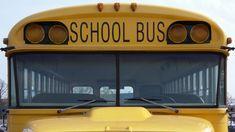 Salva la vida a sus compañeros al coger el volante del autobús escolar