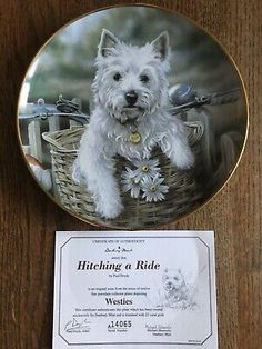 """Gold Trimmed West Highland White Terrier Collector Plate """"Hitching A Ride"""" West Highland White, White Terrier, Westies, Terriers, The Collector, Plates, Animal, Gold, Ebay"""