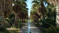 marseille jardin | Parc du 26e centenaire