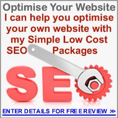 """I'll do a Free Review on your website & outline which """"Optimize My Website"""" Package is best for you."""