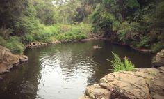 Brisbane's Best Water Holes #2 - Gardner's Falls
