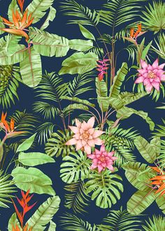 Take inspiration from vibrant tropical prints for ideas on colour combinations that work. Más Take inspiration from vibrant tropical prints for ideas on colour combinations that work. Motif Tropical, Tropical Pattern, Tropical Art, Tropical Flowers, Tropical Prints, Tropical Design, Tropical Garden, Pattern Texture, Pattern Art