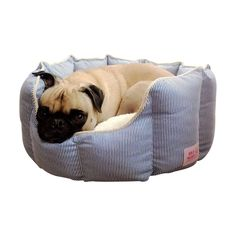 Quality Dog Bed