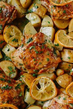 This recipe for Roasted Lemon Chicken Thighs with Potatoes is a one-pan dinner that you can prepare in 5 minutes with only 7 ingredients, throw in the oven, and then relax while it cooks––perfect for those weeknights New Recipes, Cooking Recipes, Healthy Recipes, Favorite Recipes, Lemon Recipes, Freezer Recipes, Freezer Cooking, Freezer Meals, Drink Recipes