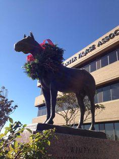 Happy AQHA Horsey Holidays