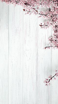 Pin on Iphone wallpaper Pink Background Images, Flower Background Wallpaper, Cute Wallpaper Backgrounds, Pretty Wallpapers, Tumblr Wallpaper, Flower Backgrounds, Floral Wallpapers, Iphone Backgrounds, Pink Glitter Background