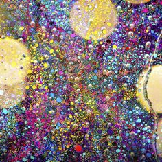 Canvas - Festa na chuva