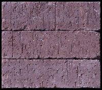 Summit Brick Company: Tumbled