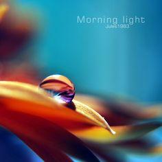 Morning light by Jules1983