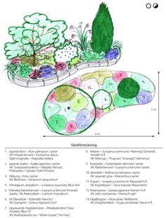 Landscape Sketch, Landscape Design, Garden Design, Landscaping On A Hill, Landscaping Plants, Container Plants, Container Gardening, Euonymus Alatus, Planting Plan