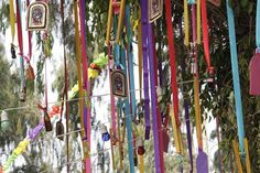 Arbol andino Party Themes, Party Ideas, Best Day Ever, Diy Crafts, Le Corbusier, Birthday, 3, Wedding Ideas, Wallpapers