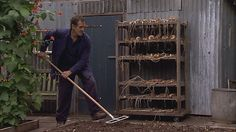 Gardener's world - Ep10 (2011/2012) Monty Don unveils his plans for a wet meadow. He starts by planting a range of wildflowers that will thrive in heavy soils and also look good amidst the long grass. He also pots-on his salvia cuttings and explains the benefits of sowing 'green manure' in the veg patch. Now that he has harvested his potatoes, that is exactly what he is doing to boost the fertility of the soil...