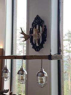 Moose on homemade display