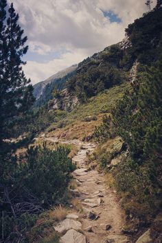 Trail hiking Mountain Life nature mountains colorado travel wanderlust places to see landscape photography Schomp MINI Theme Nature, All Nature, Landscape Photography, Nature Photography, Travel Photography, Nature Sauvage, Beautiful Landscapes, The Great Outdoors, Wonders Of The World