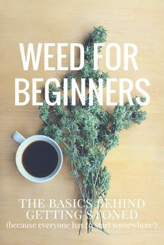 Weed for Beginners: the basics behind getting stoned. Are you curious about getting high? The Stoner Mom holds your hand through the process. No tie-dye required.