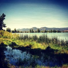Coot Lake | Boulder, Co