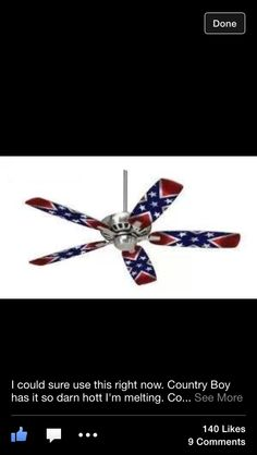 Rebel Flag Fan