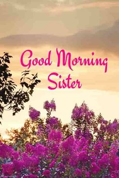 Good morning wishes for sister Images Photo Pics Wallpaper Pics HD Good Morning Prayer, Happy Morning, Morning Blessings, Good Morning Love, Good Morning Flowers, Good Morning Greetings, Good Morning Wishes, Good Morning Quotes, Morning Coffee