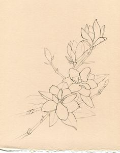 magnolia branch tattoo - Google Search