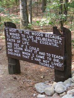 Walden Pond in Concord, Massachusetts