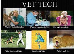 Veterinary Technician - Ha!! Finally it's explained properly =)