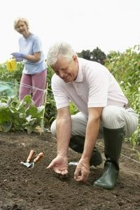 how to prepare garden for next year