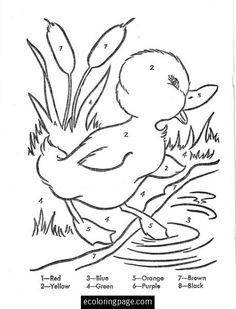 Duckling Color By Number Coloring Page