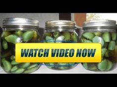 Treating Illnesses with Garlic Apple Cider Vinegar and Honey