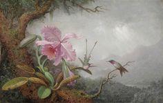 Martin Johnson Heade  Hummingbirds and Orchids