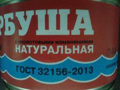 Т.И.Е. Фото от 12.10.16 г. Россия.