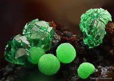 Conichalcite with adamite