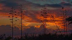 гаваи, закат, кауаи, kauai, небо, гавайских островов