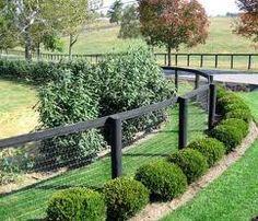 Horse No-Climb (2 x 4 Mesh) on round cedar posts