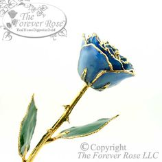Check this out! It is our 24K Gold and Blue Forever Rose!