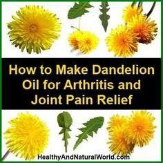 Dandelion oil for arthritis and joint b pain