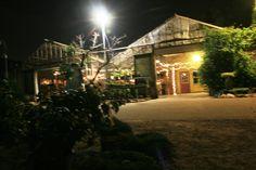 Night Lighting of Landscape House