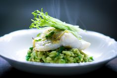 Halibut with  Spring Pea Risotto with Spanish Chorizo and Mint