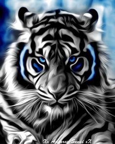 New wild animal art sun ideas Tiger Wallpaper, Animal Wallpaper, Big Cats Art, Cat Art, Beautiful Cats, Animals Beautiful, Art Tigre, Tiger Artwork, Tiger Pictures