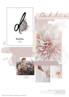 "Business infographic : © Silk&Paper - ""Dahlia"" - Flower Alphabet - Moodboard - Trend Home Design Ideen 2019 Paper Dahlia, Dahlia Flower, Flowers, Instagram Design, Flower Power, Web Design, Layout Design, Flower Alphabet, Buch Design"