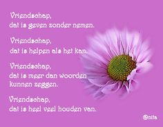 Vriendschap dat is ...... Words Quotes, Sayings, Poems About Life, Food For Thought, Bff, Lyrics, Mindfulness, Thoughts, Feelings