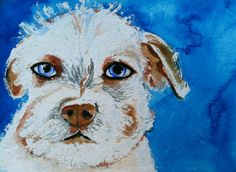 Terrier Mix Day 12 Of 30 Paintings In 30 Days