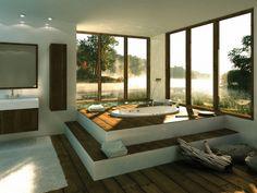 bathtub with a view