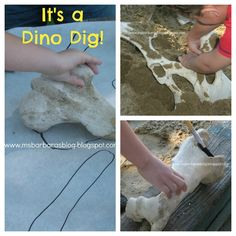 For the Children: It's a Dino Dig!