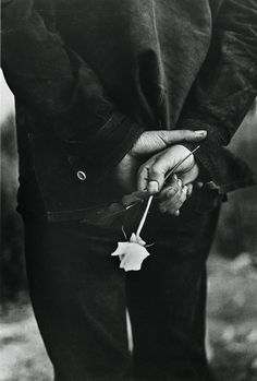 Hand With Rose, 1969  Ralph Gibson