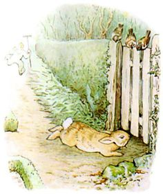 Peter got down very quietly off the wheelbarrow; and started running as fast as he could go, along a straight walk behind some black-currant bushes. Mr. McGregor caught sight of him at the corner, but Peter did not care. He slipped underneath the gate, and was safe at last in the wood outside the garden.