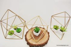 homemade ginger: DIY Geometric Planters