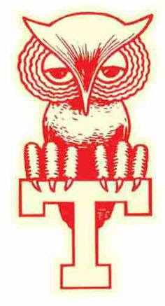 Temple University Owls Vintage Style Travel Decal Sticker | eBay