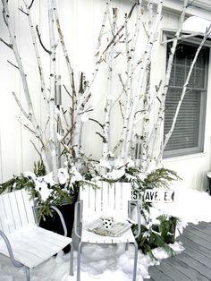 Birch Branch Winter
